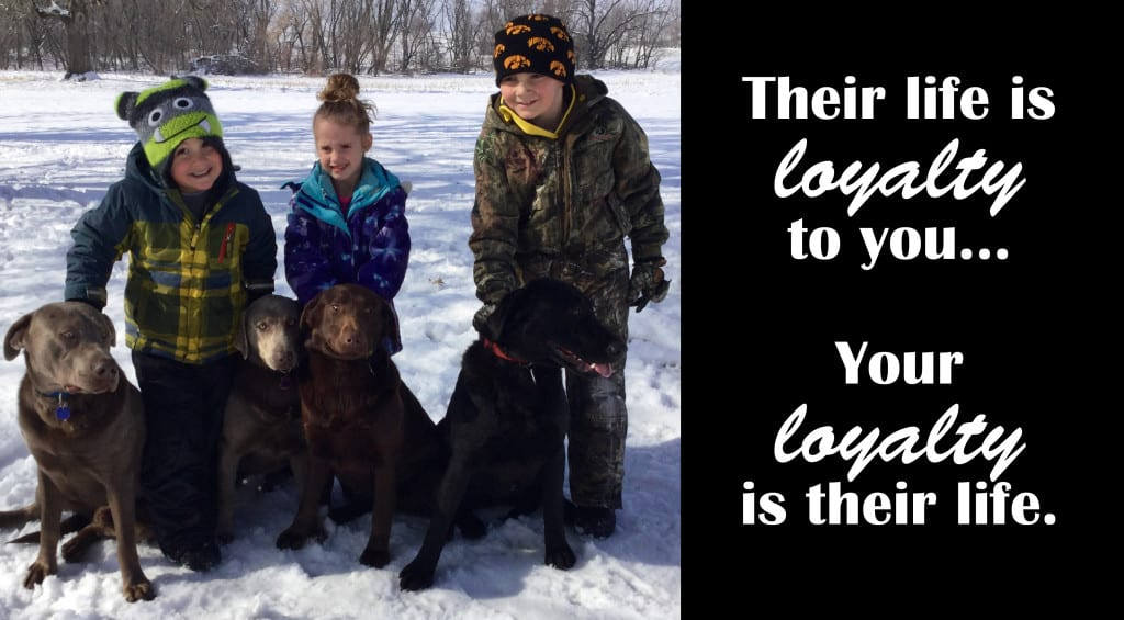 dogs-kids-with-quote